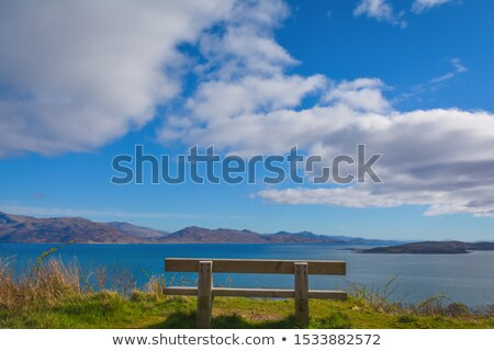 Puffy Clouds and Blue Skye Stock photo © TLFurrer