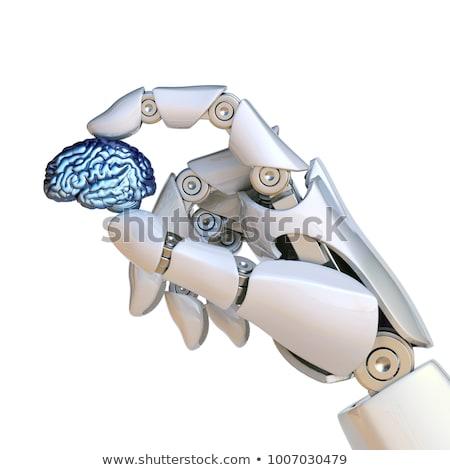 robot hand holding human brain stock photo © aliencat