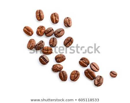 コーヒー 種子 成長 工場 コーヒー 葉 ストックフォト © dinozzaver