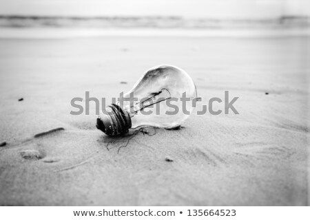 burnt light bulb bokeh beach stock photo © eldadcarin
