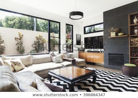 salon · szczegół · 3d · nowoczesne · ściany · moda - zdjęcia stock © eldadcarin