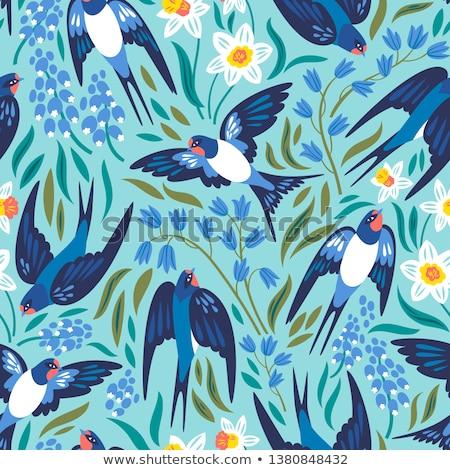 Floral background with swallows Stock photo © kariiika