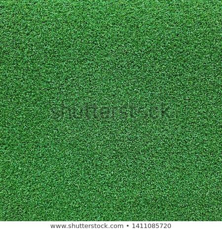 Seamlessly green carpeting background. Stock photo © Leonardi
