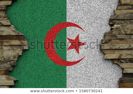 Brick wall with a painting of a flag, Algeria Stock photo © michaklootwijk