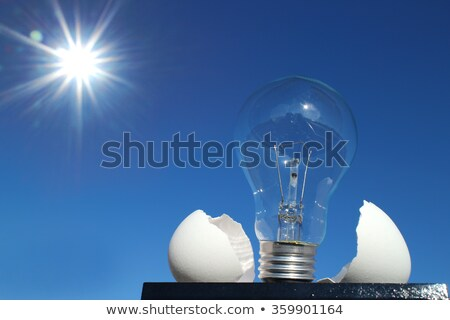 Lamp up of egg shell Stock photo © Viva