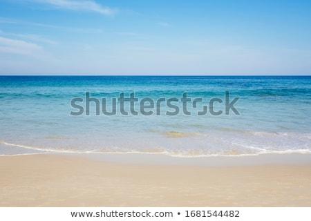 Azul oceano ondas costa água Foto stock © Frankljr