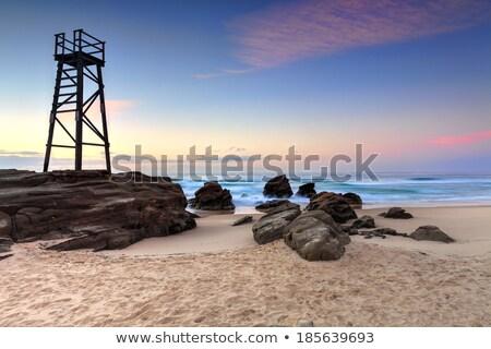 Rechin turn plajă pasăre Australia Imagine de stoc © lovleah