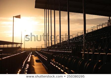 Simétrico regular patrón puesta de sol Foto stock © chrisga