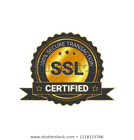 ssl protected golden vector icon button stock photo © rizwanali3d