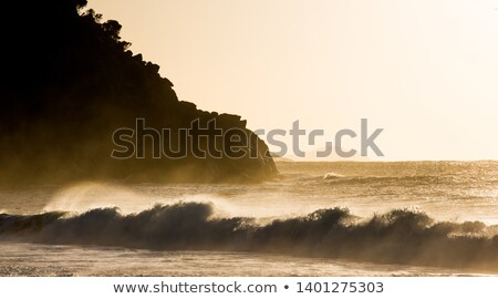 sepia wave breakers Stock photo © morrbyte