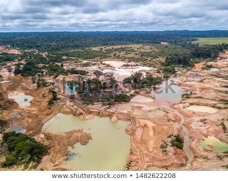 Deforestation area stock photo © olandsfokus
