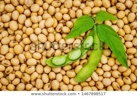 Szójabab full frame textúra felső felülnézet étel Stock fotó © stevanovicigor