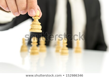 Successful political career (chess metaphor) Stock photo © grechka333