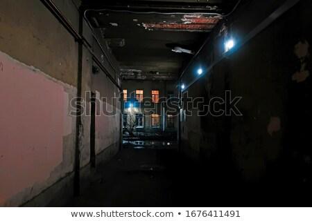 Rua luz casa fachada histórico cidade Foto stock © elxeneize