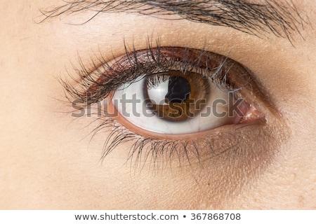 Barna szemek közelkép gyönyörű fiatal lány szemek fiatal Stock fotó © sapegina