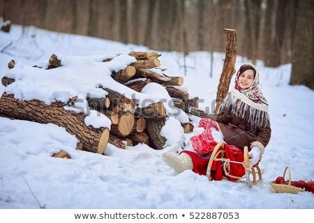 Schönen Mädchen Schlitten traditionellen Stock foto © svetography
