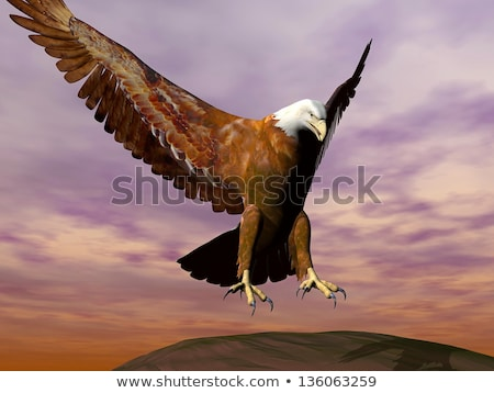 eagle landing - 3d render stock photo © mariephoto