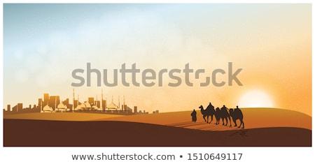 美しい ラクダ 徒歩 砂 背景 ストックフォト © SArts