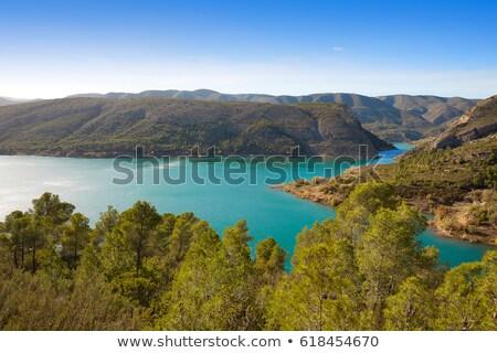 Moeras reservoir Valencia Spanje bos licht Stockfoto © lunamarina