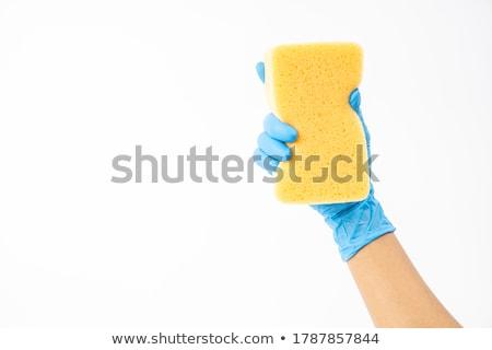 Detergente limpeza feminino mão azul casa Foto stock © OleksandrO