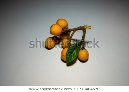 Seven kumquat fruits Stock photo © digitalr