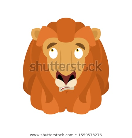 Lion confused emoji. Wild animal is perplexed emotions. Beast su Stock photo © popaukropa