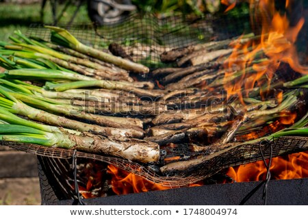 barbecuing calcots, onions typical of Catalonia Stock photo © nito