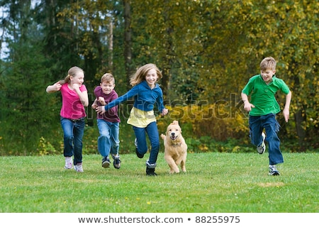 Stock photo: Group of children and dogs playing in the park