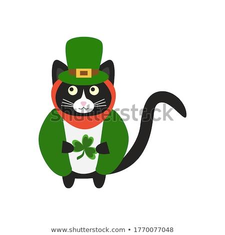 Desenho animado sorridente irlandês gatinho trevo gráfico Foto stock © cthoman