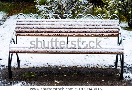 Parco panchina inverno Foto d'archivio © Laks