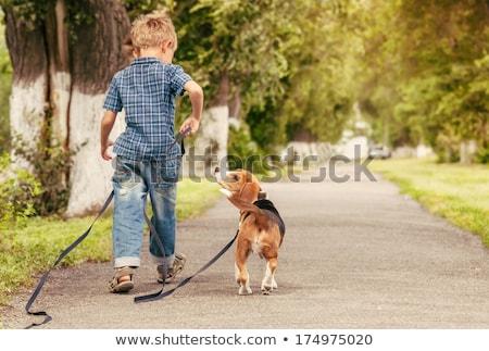 Kids walking dog at the park Stock photo © colematt