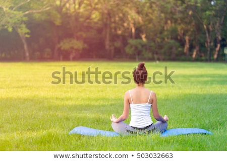 beautiful young woman practicing yoga in the park stock photo © len44ik