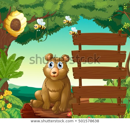 Bear sitting next to wooden signs in jungle Stock photo © colematt