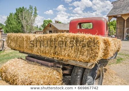 Teherautó széna tájkép háttér művészet tyúk Stock fotó © colematt