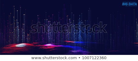 Data Security. The Blue Digital Background. Vector. Stock photo © tashatuvango