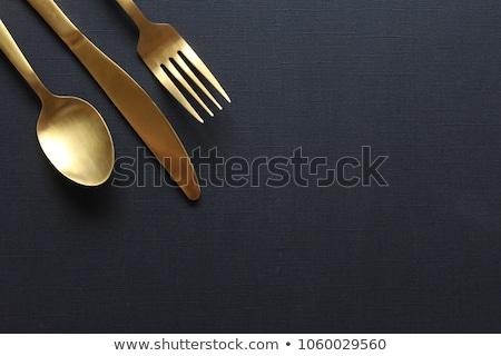 Dining ingesteld illustratie keuken Blauw Stockfoto © colematt