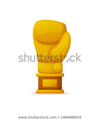 Boxing trofeo professionali boxer vettore Foto d'archivio © robuart