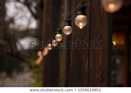 Közelkép utca girland lámpa fa tűz Stock fotó © ElenaBatkova