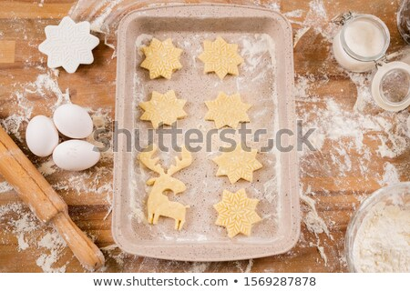 Flatlay of tray with two rows of raw cookies surrounded by ingredients Stock photo © pressmaster