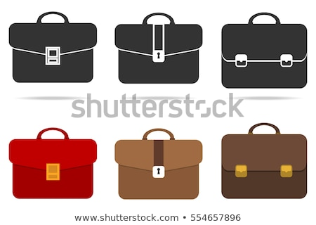 Briefcase with Documents, Bag of Businessman Icon Stock photo © robuart