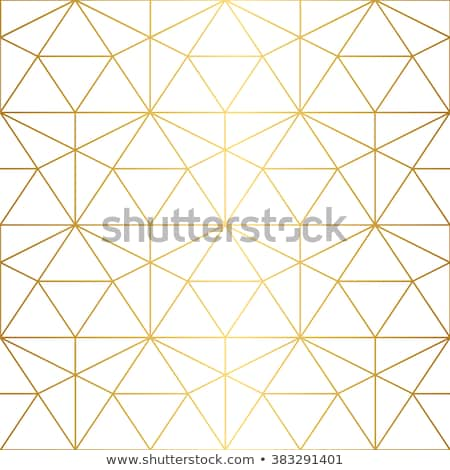 Dourado geométrico padrões linhas negócio documentos Foto stock © ShustrikS