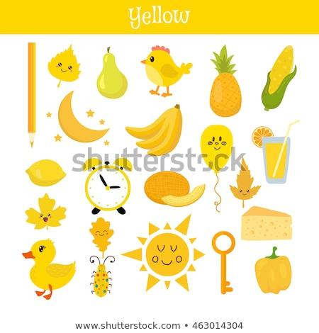 желтый узнать цвета образование набор иллюстрация Сток-фото © natali_brill