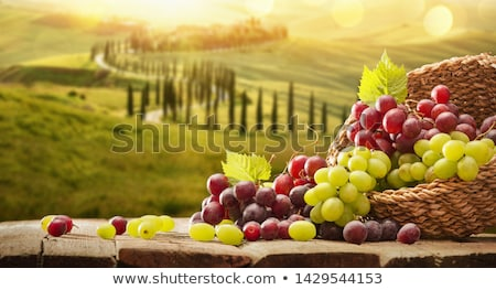bunches of grapes in basket stock photo © lypnyk2
