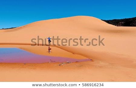 Coral Pink Sand Stock photo © emattil