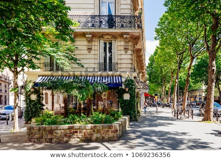 Boulevard Saint-Germain Stock photo © jakatics