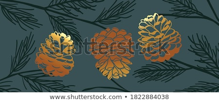 Pinecone Stock photo © raywoo