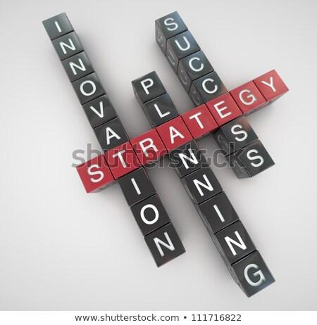 Strategy concept crosswords Stock photo © raywoo