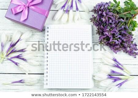 Folha notas vaso flores açafrão texto Foto stock © Kotenko