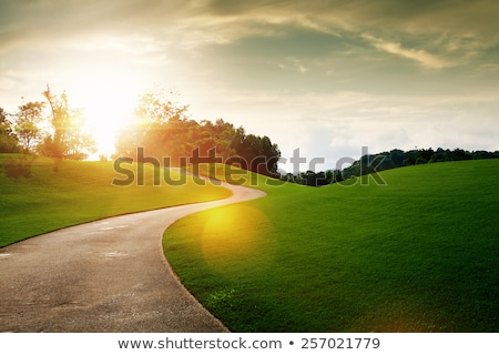 Stock photo: Clear Path
