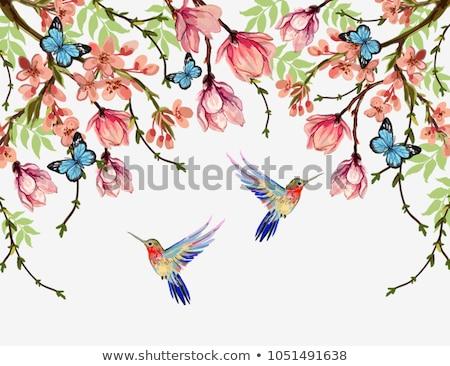 fioritura · albero · farfalle · profondità · fiori · gialli · arancione - foto d'archivio © kittasgraphics